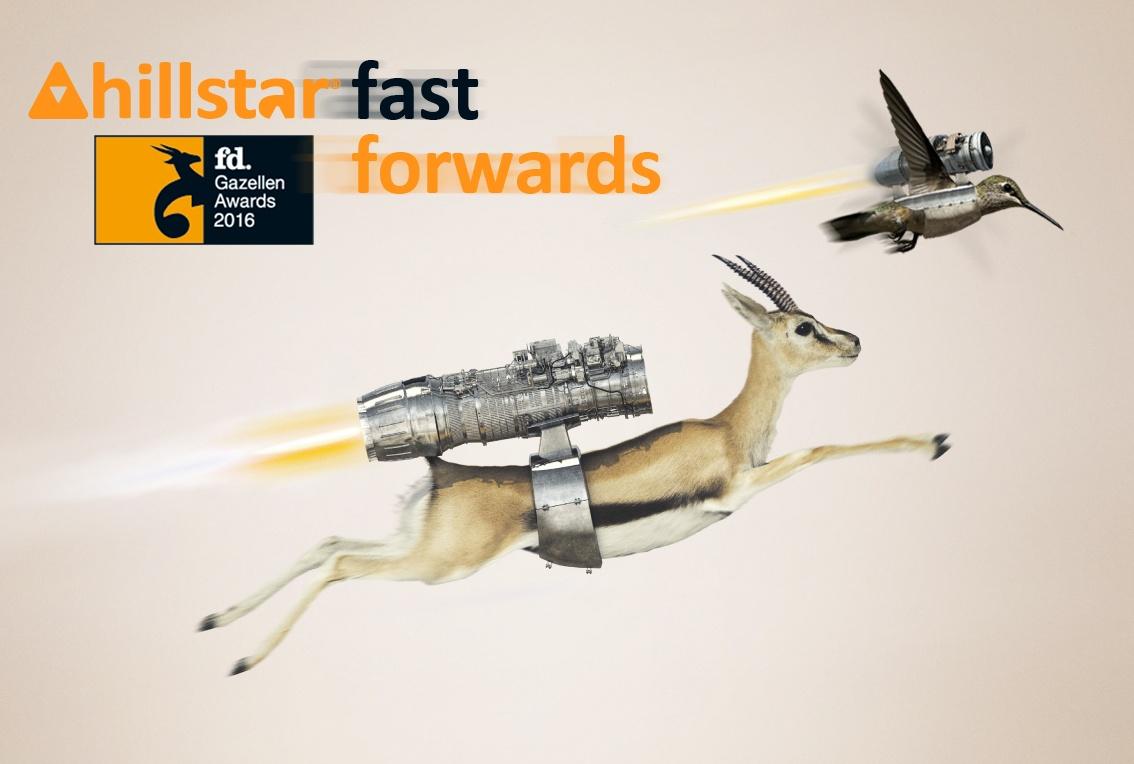 Hillstar-Business-Intelligence-wint-FD-gazelle-award.jpg